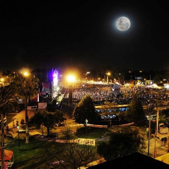 Fiesta provincial de la cerveza 2015