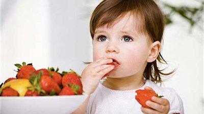 Viandas saludables para tus hijos
